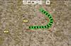 Prime Snakes